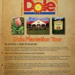 Dole Plantation - Easy Websites Solutions